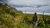 So Serene (Kathrin & Stefan) Tags: keyholerock parerabay tasmansea bay bush cloud flax nature ocean outdoor plant sky wave aucklandwaitakere northisland newzealand kathrin