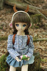 The snack (Ninotpetrificat) Tags: snack volks dd dollfiedream dollfie doll ddh10 mdd hobby handmade denim japandoll japantoys toys asiandoll wald woods bosque merienda cute kawaii dollclothes