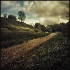 Forest road. (odinvadim) Tags: mytravelgram paintfx textured textures iphone editmaster travel iphoneography sunset evening iphoneonly church painterly artist snapseed landscape photofx specialist iphoneart graphic painterlymobileart
