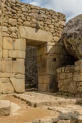Machu Picchu -_DSC0580