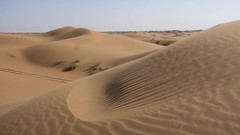 Banino-20170523-172808 (airbreather) Tags: china ningxia tengger desert shapotou inner mongolia dune sand waves ripples wind horizon