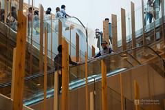 Escalators in TOYAMA Kirari (TOYAMAキラリ) (christinayan01) Tags: library toyama japan architecture building interior inside perspective indoor kengo kuma escalator