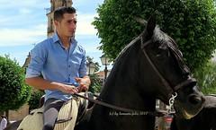 Día de San Isidro. Romería en Alameda (Málaga) (lameato feliz) Tags: jinete alameda caballo fiesta romería brindas