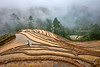 _U1H0906 Terraces,Mu Cang Chai,0617 (HUONGBEO PHOTO) Tags: tâybắc sigma1224mm canoneos1dsmark3 mùađổnước ruộngbậcthang yênbái mùcangchải dếxuphình asian peaceful rain people northwestvietnam hill photography farmer countryside clouds trees vietnamlandscape vietnamscenery scenery terraces fog highland outdoor landscape