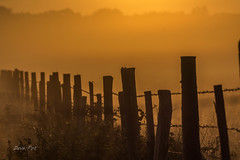 Sunrise fence (dave_poth) Tags: