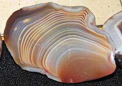 "Agate nodule (""Lake Superior Agate"") (Jo Daviess County, Illinois, USA) 12 (James St. John) Tags: lake superior agate nodule quartz chalcedony jo daviess county illinois mississippi river"
