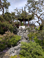 IMG_20170518_140227.jpg (imfaral) Tags: canada capilano classicalchinesegarden day14 vancouver britishcolumbia