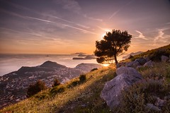 Croatia Dreaming (TheWildFireOne) Tags: red summer evening green purple hillside srd hill tree sunset adriatic croatia dubrovnik 500px