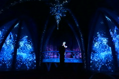 "Epcot: Frozen Ever After - Elsa • <a style=""font-size:0.8em;"" href=""http://www.flickr.com/photos/28558260@N04/34724403976/"" target=""_blank"">View on Flickr</a>"
