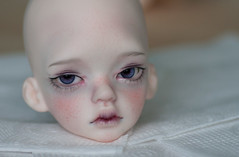 IMG_1827 (greenwolfy) Tags: bjd faceup faceupcommission makeup dim laia