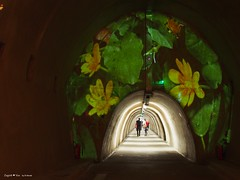 Floraart exhibition underground tunnel4