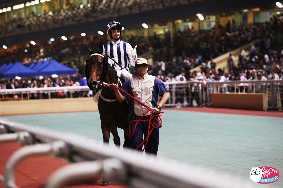 香港 馬運之都 跑馬地看賽馬