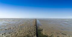 The vast emptiness or the state of containing nothing. (PvRFotografie) Tags: nederland holland groningen groothoek nature natuur landscape landschap waddenzee noordpolderzijl sonyilca99m2 12mm 1224mm sigma1224mm sigma12244556 wideangle horizon mud