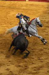 Bullfight 272 (_Rjc9666_) Tags: alentejo bull bullfight estremoz horse joãomoura nikkor55200mm nikond5100 portugal tourada tourero bullring ©ruijorge9666 évoradistrict pt 1807 272