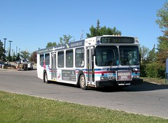 CT_7534_D40LF (Shahid Bhinder) Tags: mypictures transport transit newflyerbuses calgarytransit d40lf