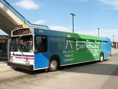 CT_8010_D40LF (Shahid Bhinder) Tags: mypictures transport transit newflyerbuses calgarytransit d40lf