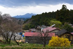 The spring of a mountain village , The sceneries I encountered in this April 山間の村の春 4月に出会った景色 (Shinji.Nagashima) Tags: