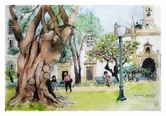 Faro - Algarve - Portugal (guymoll) Tags: faro algarve portugal usk urbansketchers onlocation croquis sketch aquarelle watercolour watercolor arbre porte architecture