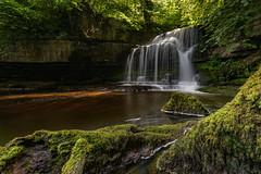 West Burton Falls (Cauldron Falls), Yorkshire Dales (MelvinNicholsonPhotography) Tags: westburtonfalls cauldronfalls westburtonyorkshire yorkshire waterfall longexposure moss rocks treetrunks sunlight uk yorkshiredales melvinnicholsonphotography nisifilters