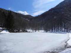 DSCN9554 (Gianluigi Roda / Photographer) Tags: springtime earlyspring mountains snow pond woods water ice