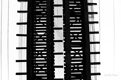 look up (Janelle Tong) Tags: janelle tong photography tony ward studio individual project upenn penn park bridges railroad tracks below two paths diverged black white
