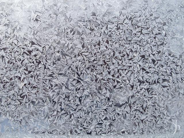 frost on a windowpane