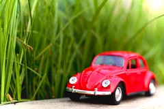 Miniature Volkswagen Beetle. (shadman ali) Tags: flare red toy car 50mmstm 50mm shadmanaliphotography canont5i canon700d green dhaka shadman shadmanphotography t5i 700d eos canon bokeh dof beetle volkswagen miniature