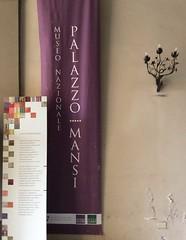 Lucca_palazzo_Mansi_0761 (Manohar_Auroville) Tags: palazzo mansi lucca italy toscana tuscany noblesse renaissance manohar luigi fedele