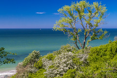 Ostsee_Rerik_Germany (b.stanni) Tags: wasser water wandern wellen waves wald wolken germany berge berg deutschland tier urlaub ufer outdoor idylle licht light himmel ocean ostsee sommer summer see green grün landschaft landscape sky clouds natur nature meer mountains mv blau
