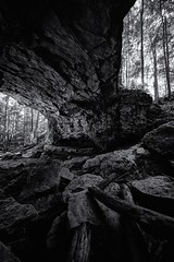 Midgard (black) (Sine--Qua--Non) Tags: landscape landscapes nature outdoors statepark mccormickscreek indianastateparks indianalandscape indianalandscapes hdr hdrlandscape subtlehdr blackwhite blackandwhite bw monochrome bwhdr blackandwhitehdr indiana wolfcave cave caves