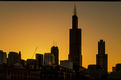 Windy City Awakening (Carl's Captures) Tags: cityscape skyline chicagoillinois cityofchicago chitown thewindycity downtown searstower willistower cookcounty sunrise dawn twilight morning awakening newday windows buildings architecture backlight goldenhour gold urban may firstlight towers skyscrapers westside landscape nikond5100 tamron18270 photoshopbyfehlfarben thanksbinexo passingbird amazingcity132