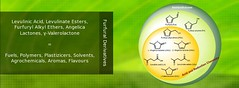 LEVULINIC ACID AND OTHER BIOBASED CHEMICALS