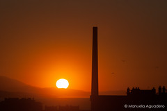 #amanecer #dawn #sol #sun #torre #tower #torremónica #2016 #málaga #costadelsol #andalucía #españa #spain #cielo #heaven #mar #mediterráneo #love #naturaleza #nature #paisaje #landscape #photography #photographer #sonystas #sonyimages #sonyalpha #sonyalph (Manuela Aguadero) Tags: landscape costadelsol mar españa sol sonystas 2016 torre sonya350 sonyimages andalucía nature dawn tower sun spain photography mediterráneo sonyalpha sonyalpha350 cielo paisaje love heaven photographer torremónica alpha350 naturaleza málaga amanecer