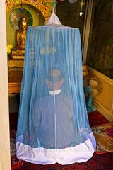 Prière (Bertrand de Camaret) Tags: asie asia birmanie burma myanmar mandalay temple priere moustiquaire bouddha bouddhisme moine monk meditation bertranddecamaret ngc nationalgeographic