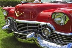 Cadillac Day (11) (AntyDiluvian) Tags: boston massachusetts brookline larzanderson automuseum vintagecars vintageautos vintageautomobiles cadillacday lawn 1954 grille tailfin taillight