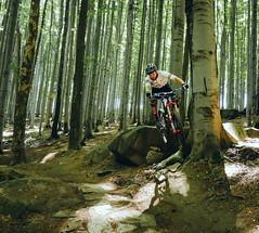 jump into a right hander (Hagbard_) Tags: bike mtb mountainbike trailbike ride enduro czech rychleby sport tour outdoor outside trailriding wood fun life friends beautiful mtbisokay nature photography rychlebskéstezky