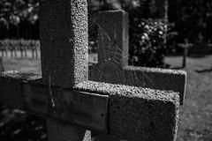 Mort pour la France (FenderTof) Tags: france lorraine vosges la fontenelle champ de bataille grande guerre 1914 1918 noir et blanc black withe shwartz und weiss bw monochrome