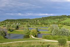 Golf Club Le Fonti, Castel San Pietro Terme, Italy, May 2017 034 (tango-) Tags: castello laghetto scardovi italia italien italie