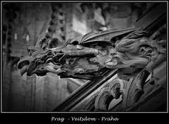 Gargoyles - 3 (fotomänni) Tags: prag praha prague veitsdom gargoyles wasserspeier steinfiguren skulpturen skulptur sculpture kunst schwarzweis blackwhite noirblanc gargouille manfredweis
