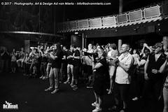 2017 Bosuil-Het publiek bij The Road Home en The Brandos 2-ZW
