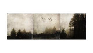 Mists of the Sherragh Vane