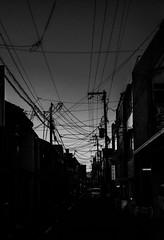city of wires (BenedekhorvatH) Tags: monochrome sky mono black blackandwhite blackwhite white shadows japan nikon d7100 street city outdoor light dark contrast wire house