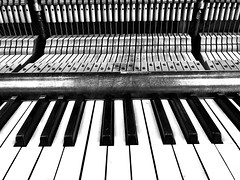 Tickle Me Ivories (jah32) Tags: piano keys deconstructing guts pianoguts blackandwhite bw cmwdbw instrument instruments iphone7 iphone 7