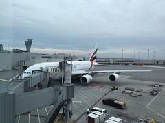 EK Airbus A380-800 A6-EDY (kevincrumbs) Tags: sanfranciscointernationalairport sfo ksfo emirates ek الإمارات airbus a380 a380800 airbusa380 airbusa380800 a6edy airliner