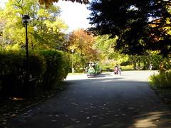 Parcul Herăstrău (cod_gabriel) Tags: herăstrău herastrau parc parculherăstrău parculherastrau trenuleţ trenulet autumn toamna bucureşti bucuresti bucharest bucarest bucareste bukarest boekarest romania roumanie românia park