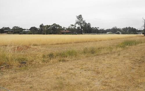 Lot 219, 219 Wallace St, Coolamon NSW