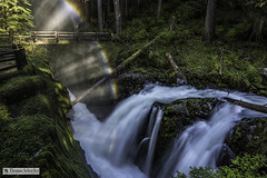 Rainbow over Sol Duc Falls ~ Olympic National Park (Thomas Schoeller Photography) Tags: solducfalls hikingtrails washingtonstate washington waterfalls waterfallpictures olympicnationalpark olympicpeninsula nationalparksoftheusa nationalparks rainforest temperate cascades runningwater rainbow refractedlight multicoloredarc ethereal mezmarizing charming forest forestscenes deepforest forested nationalforest ferns moss mossy streams riversandstreams picturesofriversandlakes pacificnorthwest pacificcoastalregion gorge rockygorge wilderness wildplaces