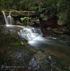 seek and ye shall find (donnnnnny) Tags: waterfall wildriver bush creek colour australia nsw centralcoast