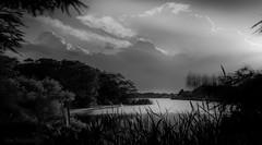 Majesté (JDS Fine Art Photography) Tags: lake bw clouds illumination light dramaticlight inspirational beauty naturalbeauty naturesbeauty atmosphere
