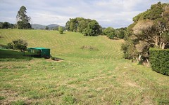 52 (Lot 1) Reserve Creek Road, Kielvale NSW